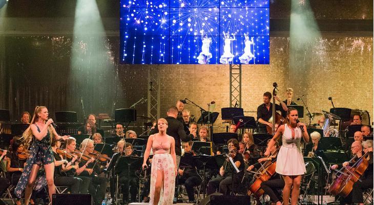 Wie wil ervaring opdoen inBreda's Festival Orkest?