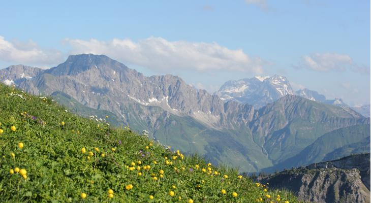 Orkest Zuid daagt je uit om Eine Alpensinfonie mee te spelen