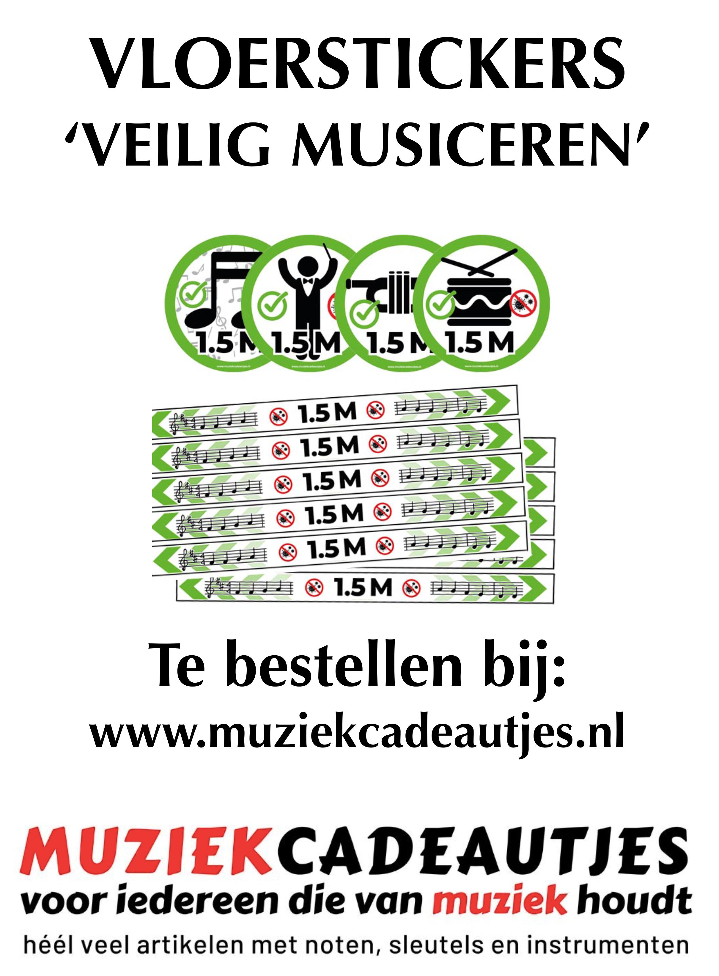 Muziekcadeautjes