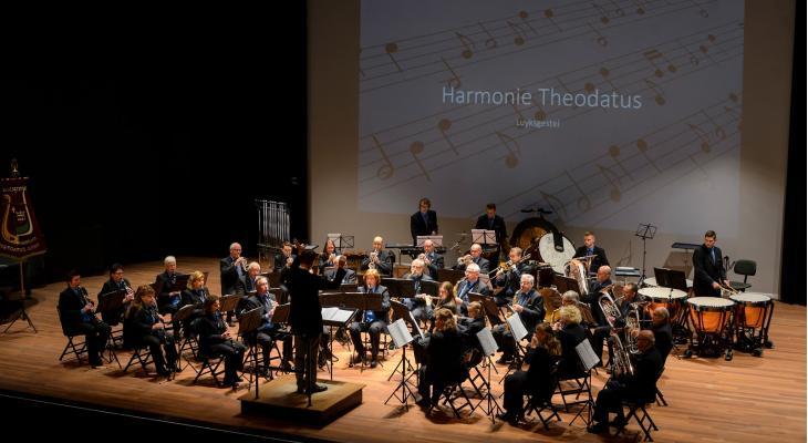 Theodatus Luykgestel zoekt dirigent